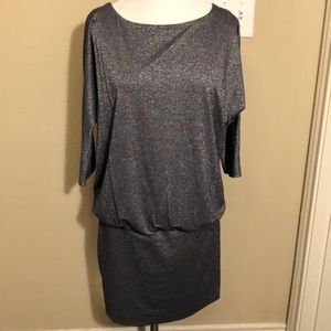 WHBM silver shimmer dress size XS